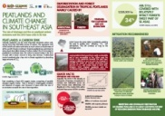 Peatlands and Climate Change in Southeast Asia